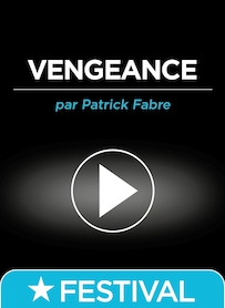 Affiche du film VENGEANCES