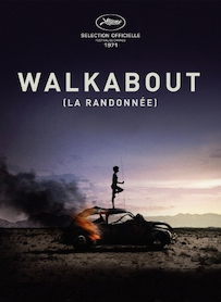 Affiche du film WALKABOUT