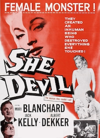 Affiche du film SHE DEVIL