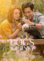 A DOG'S JOURNEY DE GAIL MANCUSO (2019)