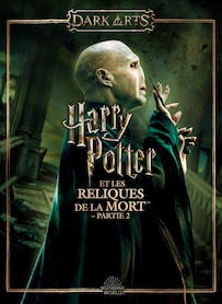 Harry potter et la coupe de feu mike newell film - Harry potter la coupe de feu streaming ...