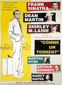 Affiche du film COMME UN TORRENT