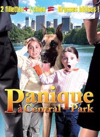 Affiche du film PANIQUE A CENTRAL PARK