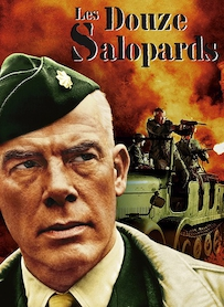 Affiche du film LES 12 SALOPARDS